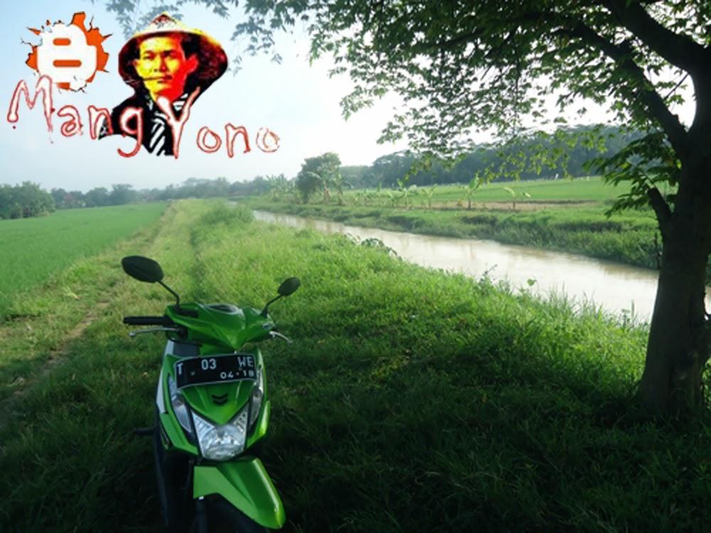 Sungai Ciasem yang mengairi daerah sawah blok Cibandung, Gondang, mekarwangi, Bakan Asem, Sumurama sampai ke muara
