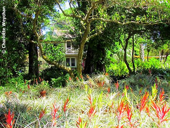 Small is beautiful! Two petite botanical gardens on Florida\'s ...
