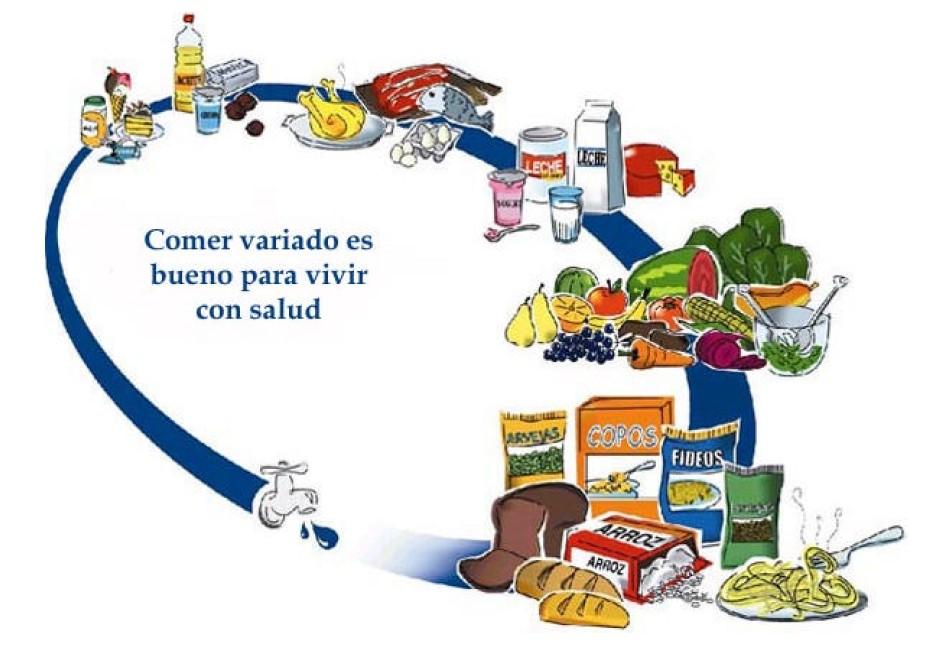 SEGAL Seguridad Alimentaria: EL OVALO NUTRICIONAL DE ARGENTINA