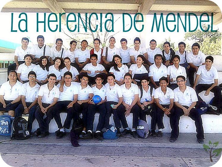 Los Herederos de Mendel