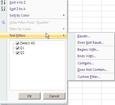 Apache POI Custom Text Filter Example