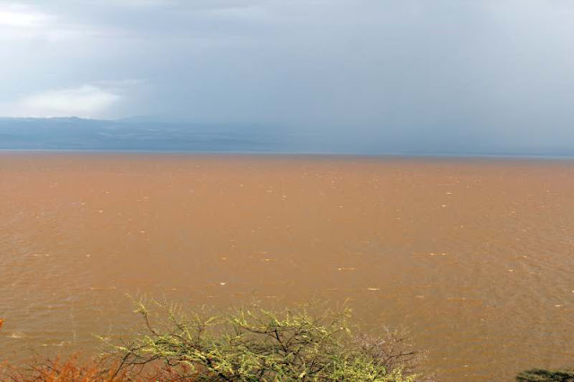 Lake Langano Ethiopia