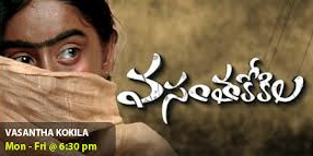 Vasantha kokila Maa tv serial episode 387 , Jan 2 ,2013