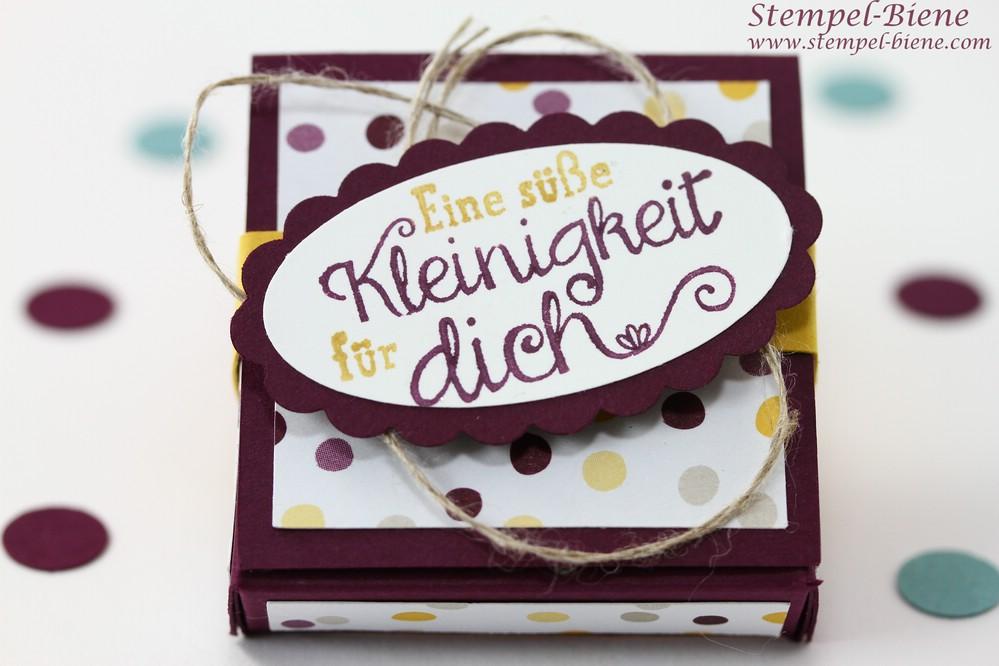 Stampin' Up Schokoladenverpackung, Stampin Up Für Leib und Seele, Stampin up Brombeermousse, Stampin Up neuer Jahreskatalog, Team Stampinclub Bloghop