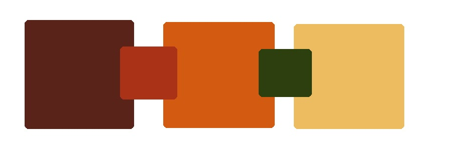 Kortney shane 39 s wedding color scheme - Orange brown color scheme ...