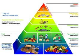 the food pyramid guide