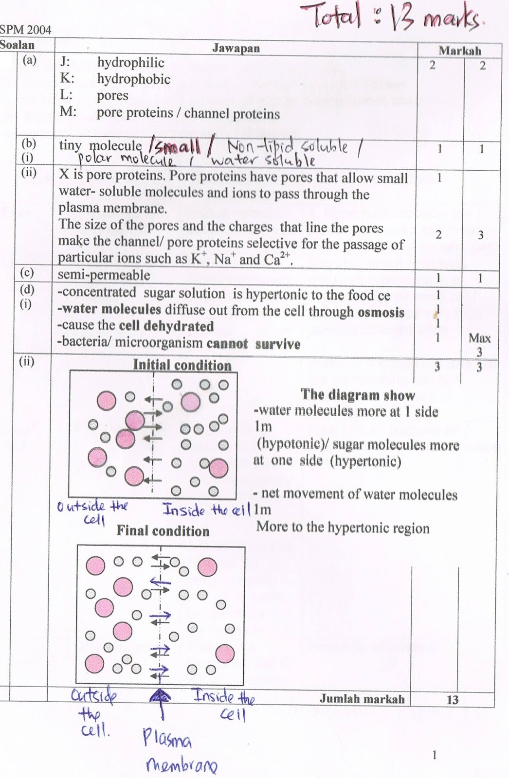 biology chapter 3 answer structures and essays essay 1