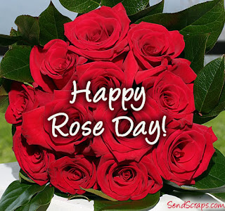 rose day photography