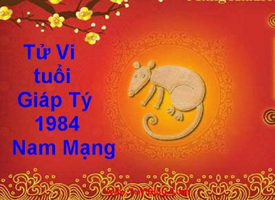 Tử Vi tuổi Giáp Tý 1984 Nam Mạng