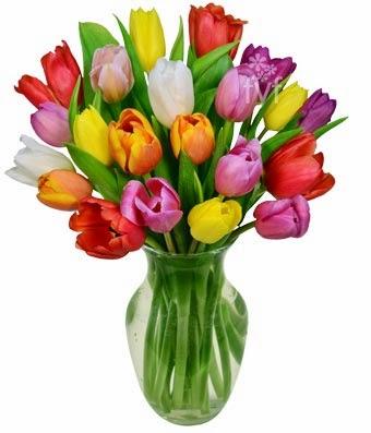 bloomex-llsc-tulips