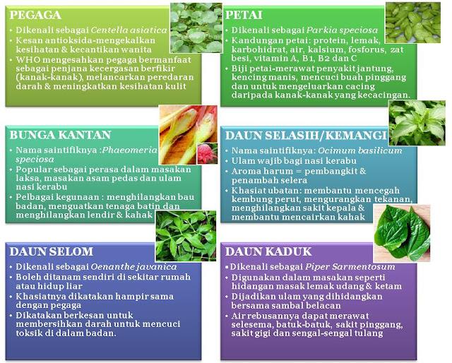 kesihatan semulajadi