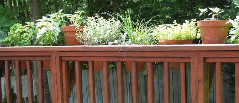 How To Have Endless Fresh Herbs U0026 Beautiful Plants On Your Deck, Patio Or  Porch Without ENDLESS Watering!!