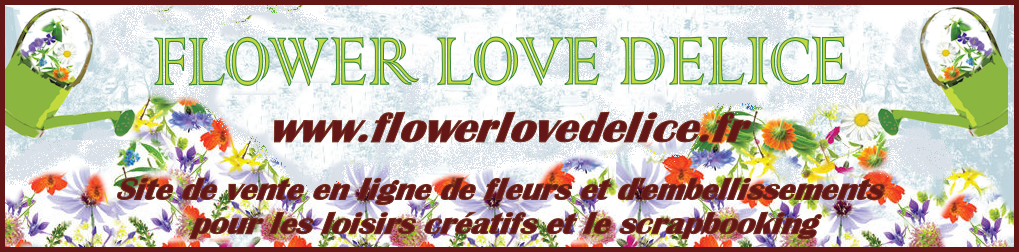 http://flowerlovedelice.blogspot.fr/
