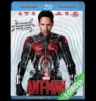 ANT-MAN: EL HOMBRE HORMIGA (2015) FULL 1080P HD MKV ESPAÑOL LATINO
