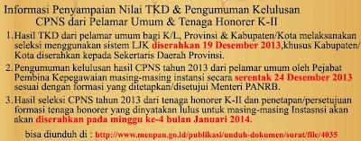 Pengumuman Hasil Tes CPNS Tahun 2013 Untuk Umum 24 Desember Honorer K2 Januari 2014