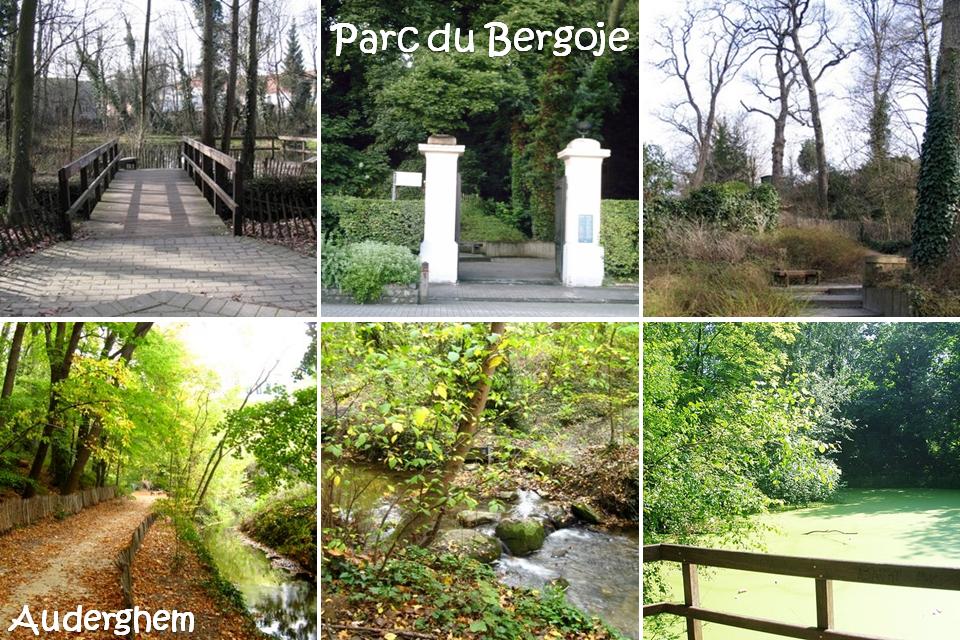 Parc du Bergoje - Auderghem - Bruxelles-Buxellons