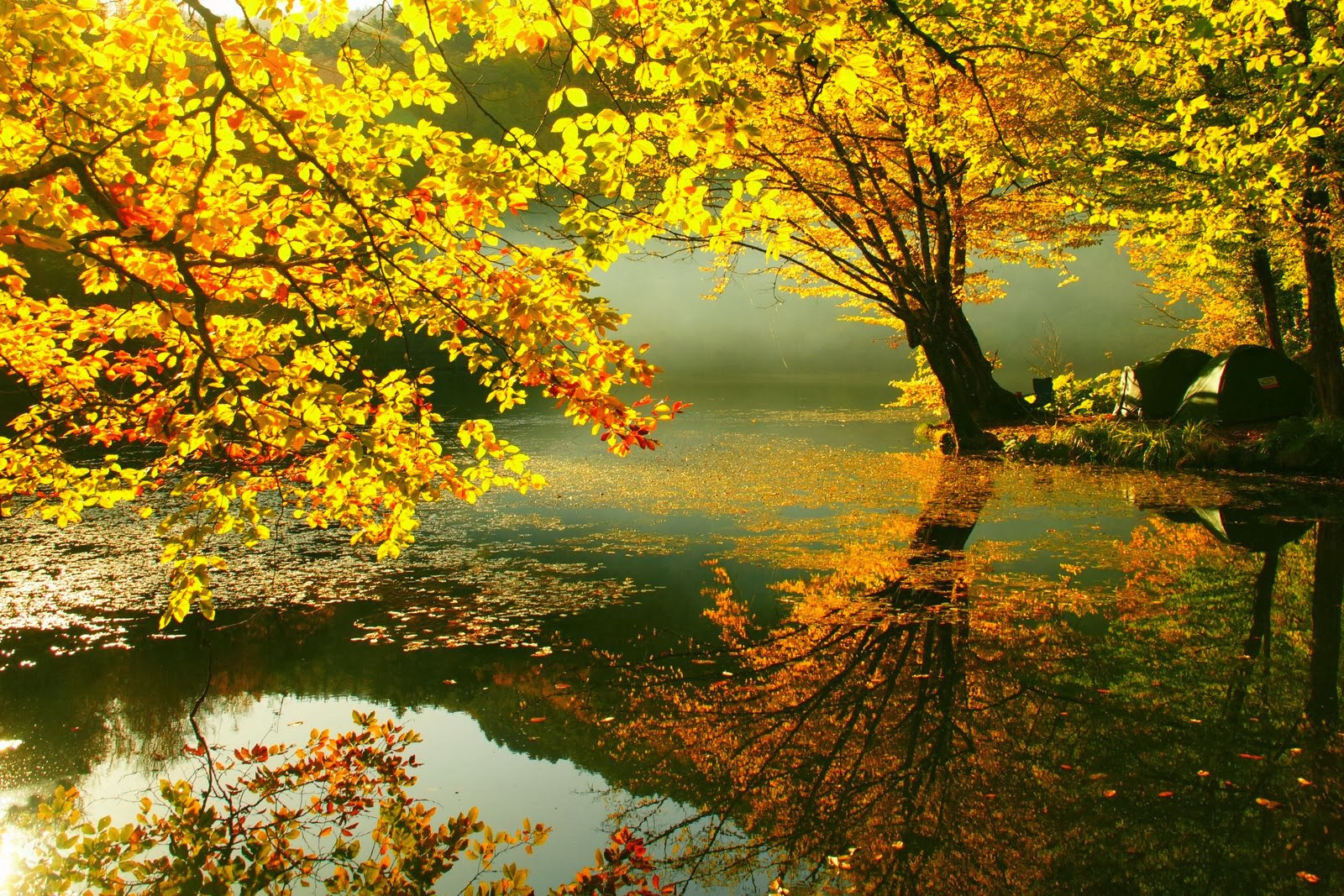 Beautiful Autumn Wallpapers | Most beautiful places in the ...
