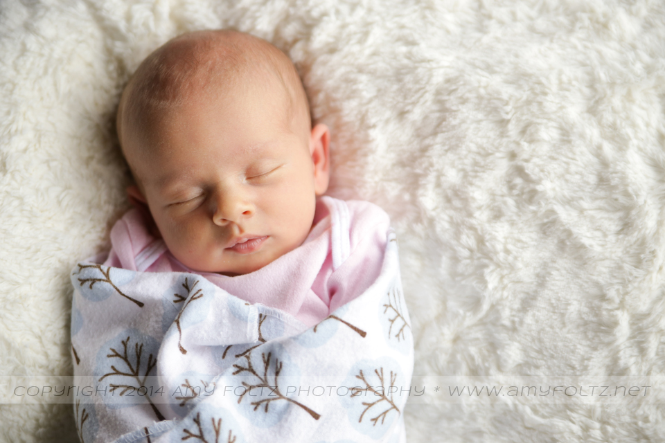 photo of a swaddled newborn - Terre Haute photographer