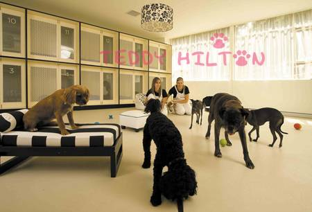 Las residencias caninas más caras del mundo