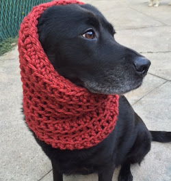Handmade Dog Scarves!