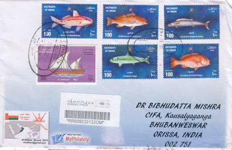 OMAN FISH COVER, AUGUST, 2011