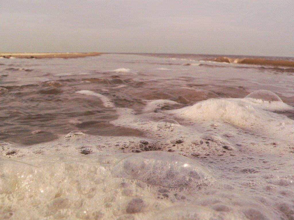 Wochenende Winter Urlaub Insel Meer Strand Sand Ausblick Schaum