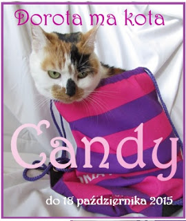 candy u Doroty co ma kota