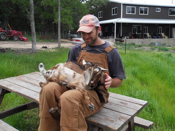 I chose to take on the task of bottle feeding baby goats before we fully ...