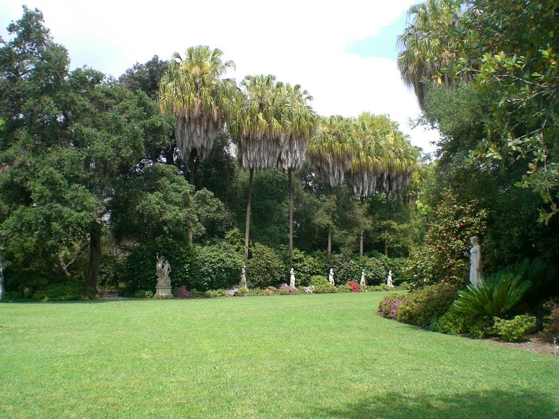 Typical Adventures: Huntington Library Gardens Visit