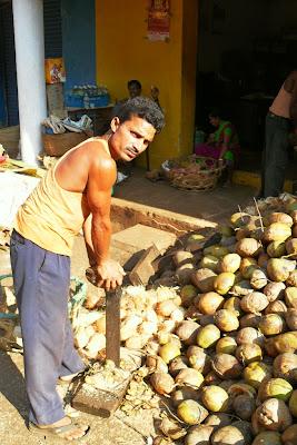 индус очищает кокос от койры