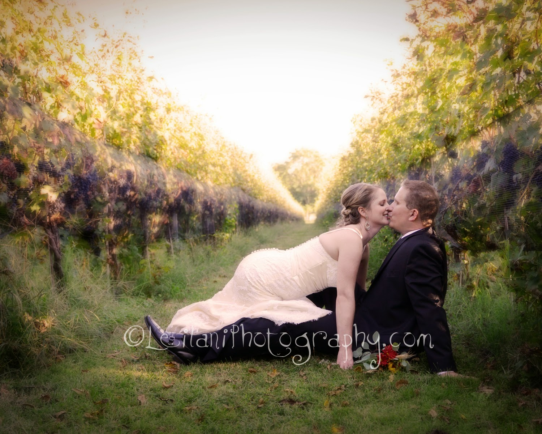 Northern va winery wedding