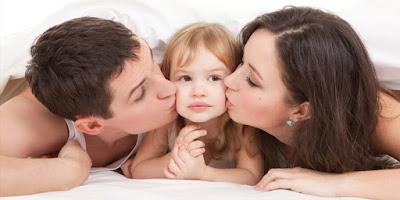 CRYSTAL X SOLUTION FAMILY  HARMONY