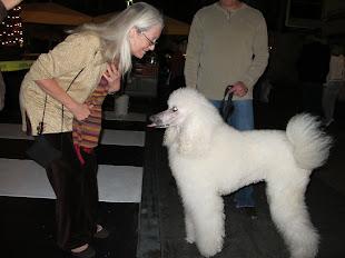 Nancy M. Hoyt + Standard Poodle.