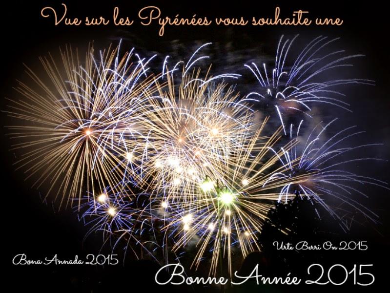Bonne Année 2015 des Pyrénées   bona annada Urte Berri On 2015