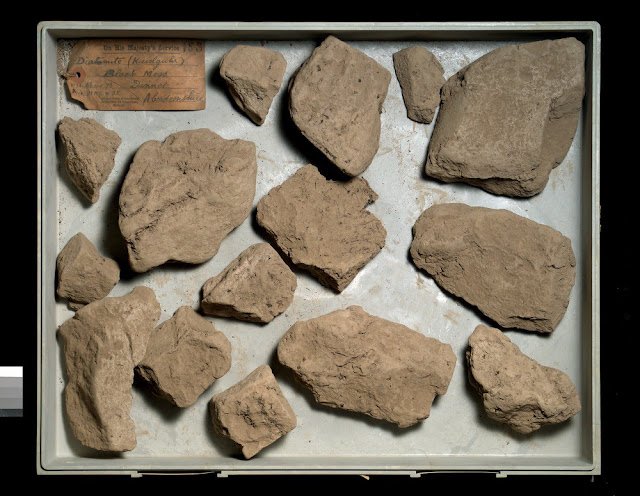 A collection of specimens of diatomite from the deposit at Muir of Dinnet near Ballater, Aberdeenshire.