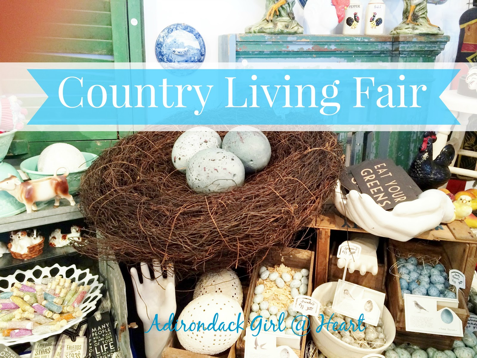 the amazing country living fair in rhinebeck adirondack girl heart