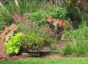Sunny-ish Gardening