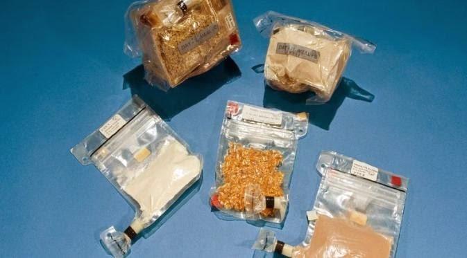 makanan yang dikonsumsi astronot   liataja.com
