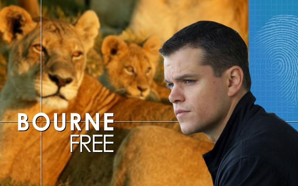 Bourne Free - the fifth Jason Bourne movie