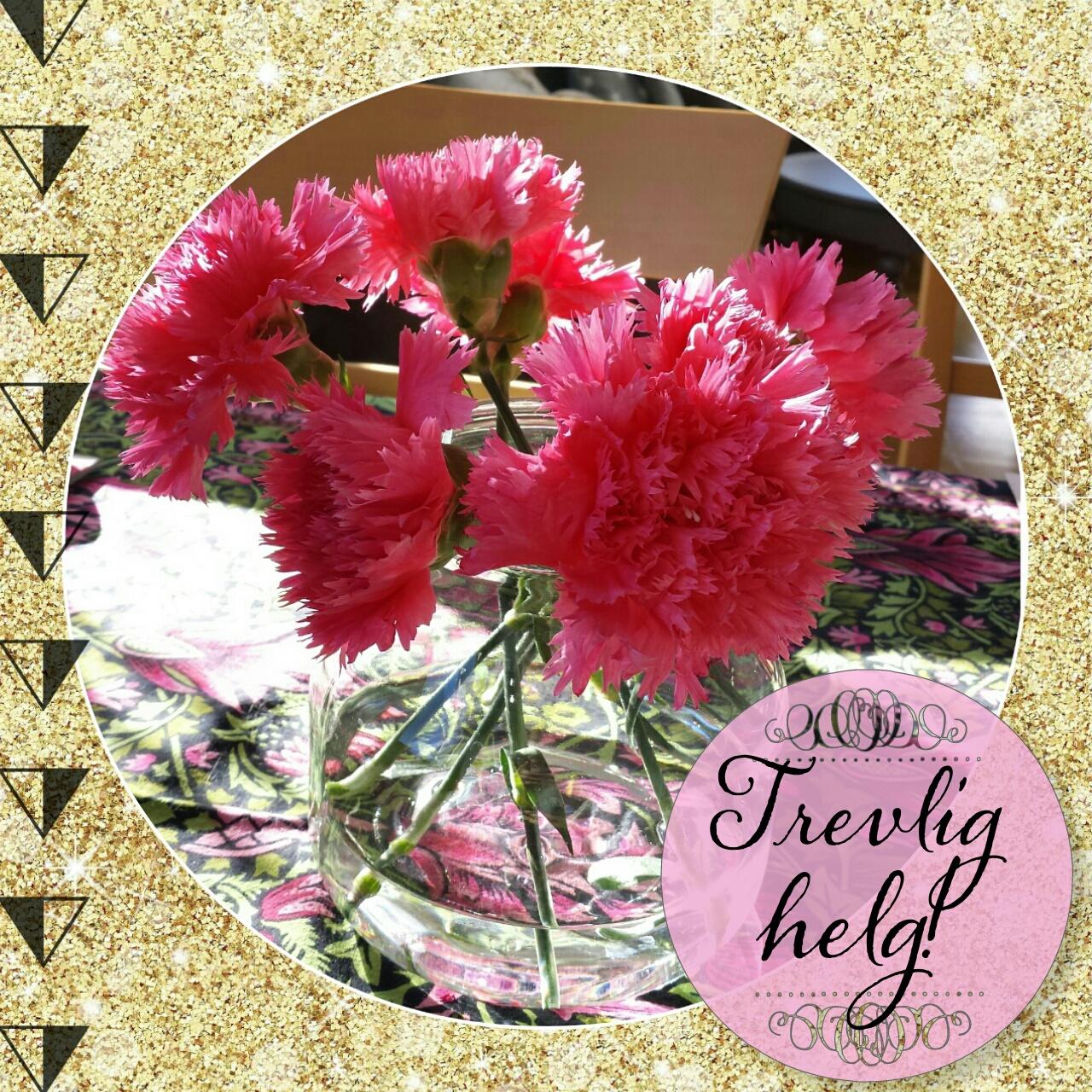 trevlig helg, nejlikor, rosa, pink, flowers, gold
