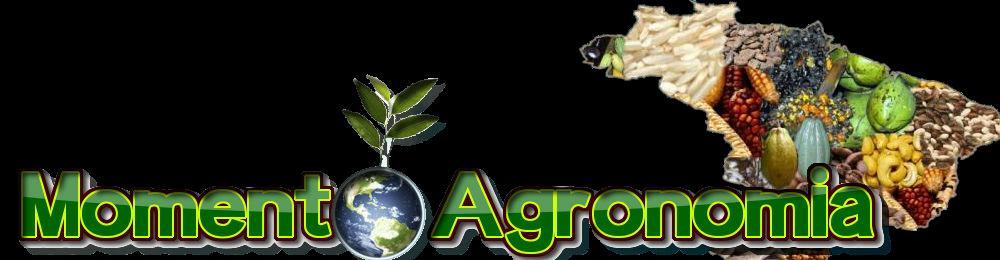 Momento Agronomia