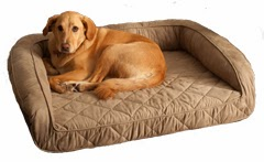 Dogpedic Memory Foam Dog Bed Dog Allergies
