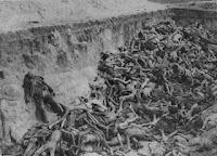 Vitimas dos Nazistas