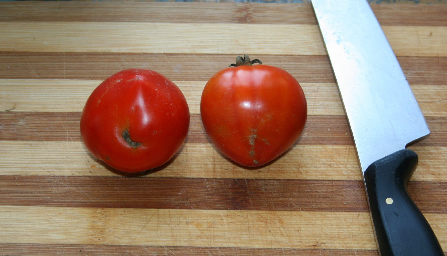 Tomatoes still hot from the sun for my butties