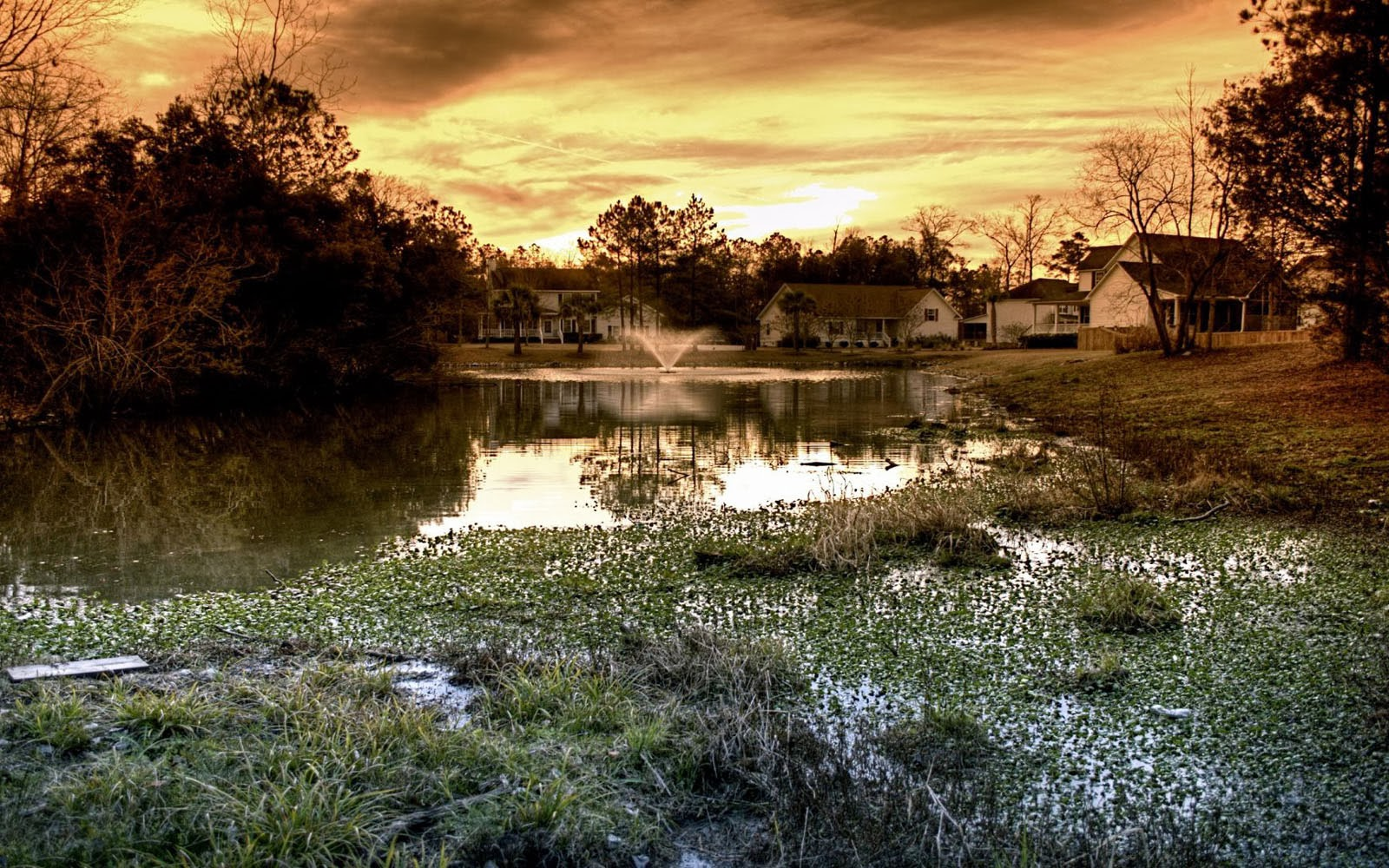Wallpapers House And Pond Wallpapers