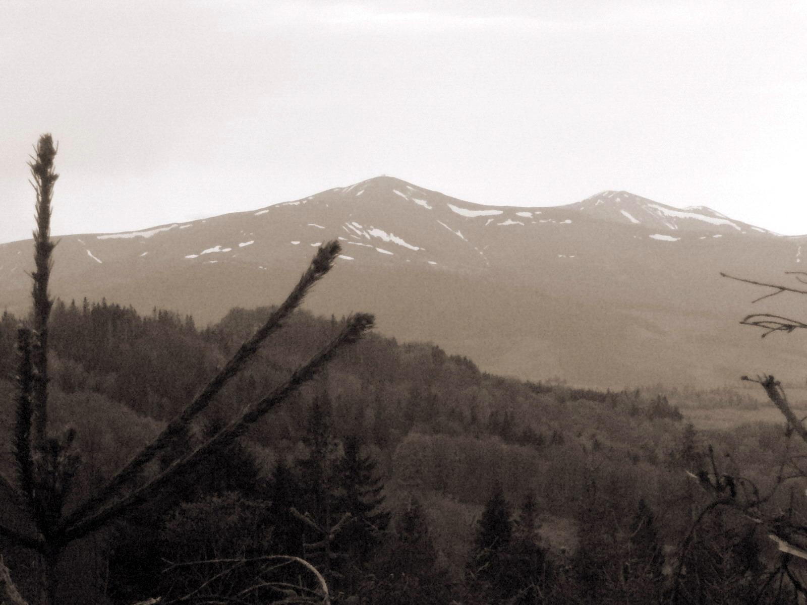 Карпатская гора Полонина Боржава со снегом. Пейзаж.