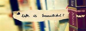 Life is Beautiful Banner