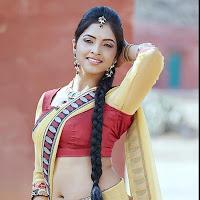 Sanchita hot pics in saree show