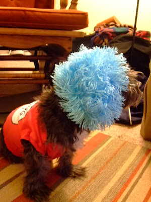 DIY dog Halloween Costume Thing 1