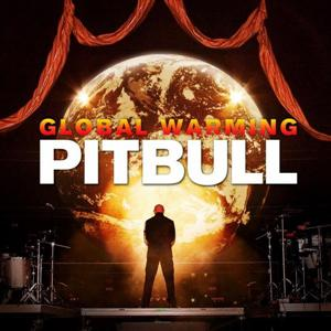Pitbull ft. Chris Brown - Hope We Meet Again Lyrics